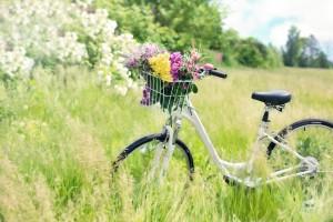 Sklep rowerowy Mokotów