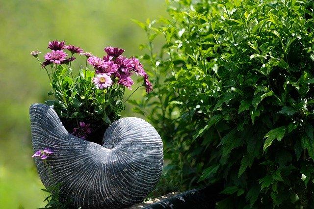 Kwiaty i krzew w ogrodzie posadzony za pomocą świdra glebowego od firmy BMK